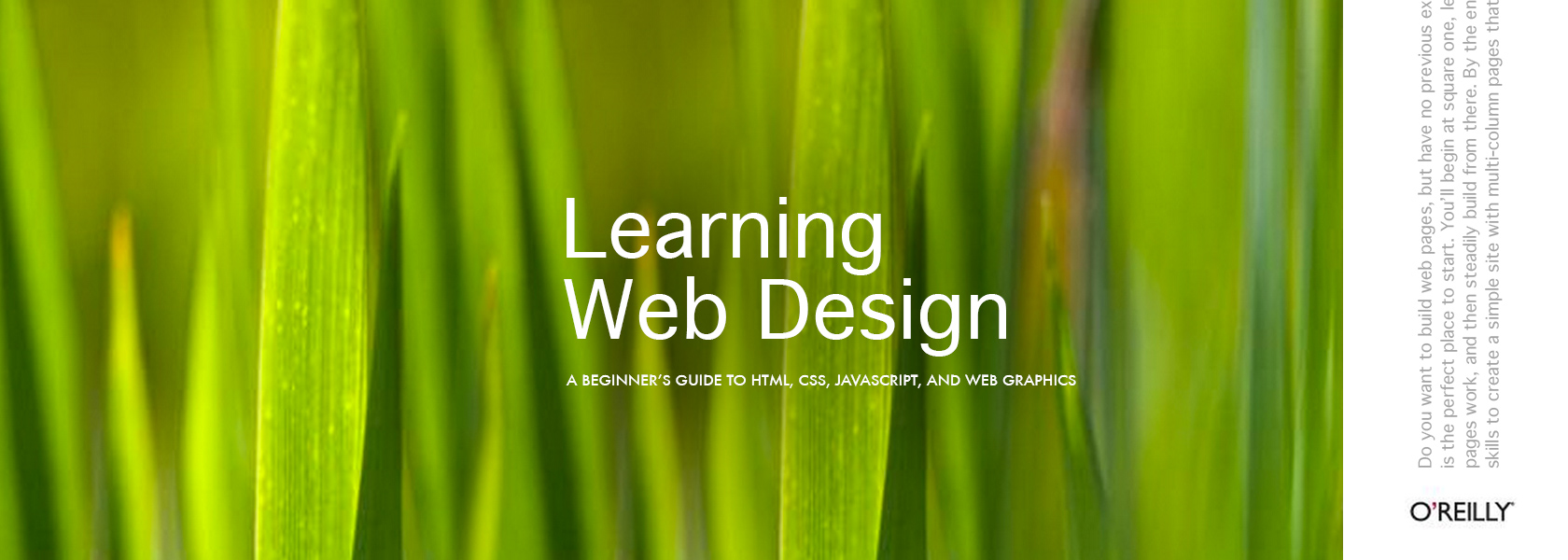 Beginner web design books for learning web design facing web design for How to learn web designing at home free