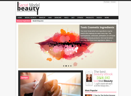 Magazine and Blogging Website by Facing Web